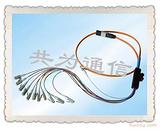 TCC-12芯FC束状尾纤|12芯SC束状尾纤产品展示