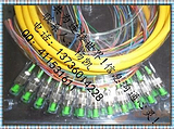 12芯束状尾纤|FC束状尾纤|FC光纤尾纤