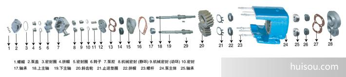 2---转子泵结构图