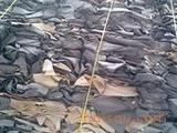 工业胶原料供应碎皮的特性