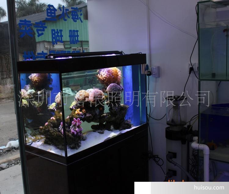 108w大功率led水族灯 海缸灯 海水鱼专用灯 珊瑚专用灯
