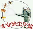 深圳龙华杀虫公司0755-88827896平湖|观澜|宿舍杀臭虫