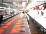 深圳市裕华达服饰制品厂提供油类印刷加工