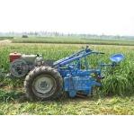 寻求大蒜花生土豆地下作物收获机发明专利项目转让