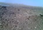 大量优惠改良土壤有机肥料