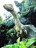 常州 恐龙谷温泉 二日  299元