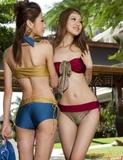 批发新款贝迪斯高档泳衣泳装泳裤1041比基尼