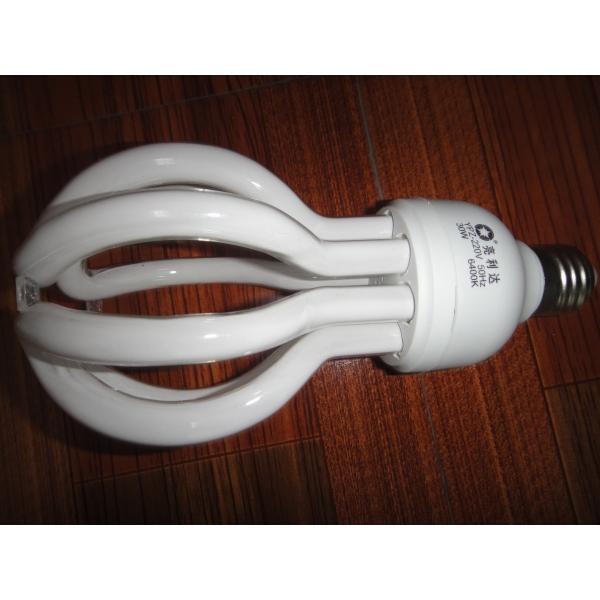 大功率节能灯3