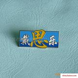 戴思乐泳池徽章,珐琅徽章,展会徽章,企业徽章