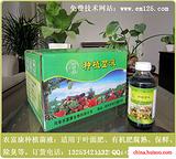 种植茶叶应如何使用EM菌生产无公害茶叶