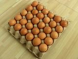 鸡蛋托盘机,鸡蛋托盘,蛋托生产