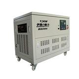 上海直销静音箱柜式12KW多燃料发电机