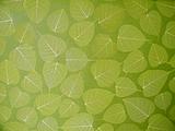 树叶墙纸(图)