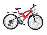 天津自行车