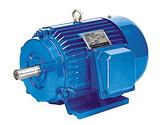 贝达水泵——三相异步电动机
