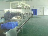 微波氯化锰干燥设备