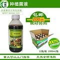 干鸡粪有机肥发酵剂厂家代理 干鸡粪有机肥发酵剂招商加盟