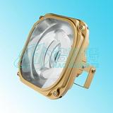 免维护泛光灯HC1803,免维护泛光灯厂家,防眩泛光灯照明