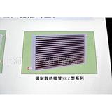 【厂家直销】上海SRZ型铜制绕片散热排管100*200mm