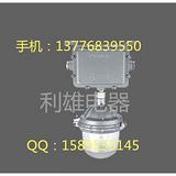 NFE9112 防眩应急泛光灯 分体式的泛光灯