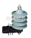 Y5WS-10/30瓷套氧化锌避雷器