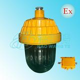 防爆应急灯,HBP2601防爆平台灯,防爆应急灯