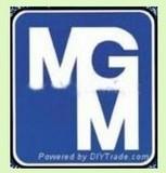 意大利MGM双速单绕电机