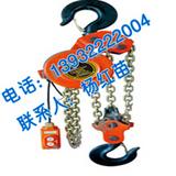 DHP群吊电动葫芦|怀鸽环链电动葫芦 大型油罐专用葫芦10吨3米