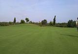 广州宝润园艺灌溉厂家直供最新技术高尔夫球场草坪种植养护联系电