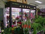 (新款)鲜花保鲜柜,鲜花店鲜花柜,鲜花保鲜柜价格,鲜花保鲜柜品牌