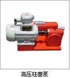 供应1ZJT-0.55/16柱塞泵/柱塞计量泵