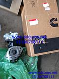 供应美国A2300康明斯发动机配件气缸工具包 厂家批发价格