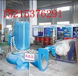 维修飞力进口水泵2