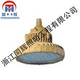 免维护节能防爆LED灯DB6230B