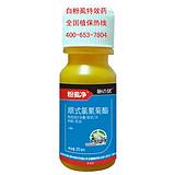 专杀白飞虱特效的药 豆角白飞虱防治 最好的白飞虱杀虫剂厂家