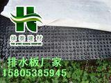/商丘-车库顶板排水板&提供专业施工人员/