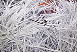 昆山积压文件销毁,上海市会计管理文件销毁,苏州积压文件快速销毁