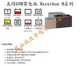 苏州12V40AH M12V40美国GNB蓄电池