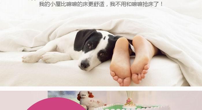 智合集团(中国)有限公司成立于香港,旗下5个品牌,4家公司1家工厂。在中国东莞建立宠物家具酒店木盒礼品木盒家庭用品研发生产制造基地---智合木业工厂。是中国目前生产规模较大,技术实力强大 ...[详细]