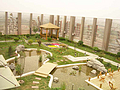 北京绿化公司 北京绿化养护公司 北京庭院绿化