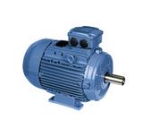 徐州WEG电机 高压电机 400-8804-818