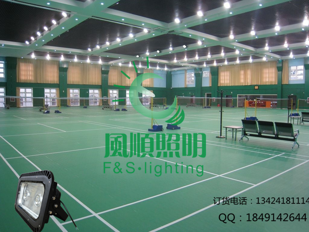 灯具价格 室内羽毛球场专用灯批发价格 深圳市