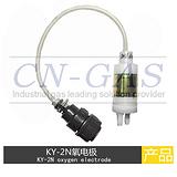 KY-2B氧电极用于化肥厂合成氨工艺专用的氧电极
