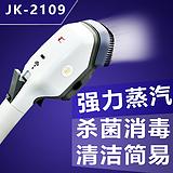 手持式蒸汽刷650W电熨斗促销 时尚好帮手蒸汽熨刷JK-2109