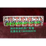 潍坊鑫派柴油机起动机,潍坊鑫派4100柴油机水箱
