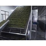 带式干燥机,源广华干燥,单级带式干燥机