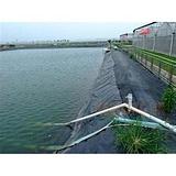 山东防渗膜厂家,广州鱼池防渗膜,鱼池防渗膜多少钱