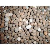 高强页岩陶粒,山西页岩陶粒,海韵多图