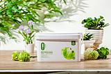 糯米图水性环保涂料水性漆 净化空气 吸附甲醛涂料品牌