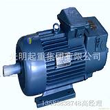 工程机械专用电机 厂家直销三相异步电机 加工定做优质电机